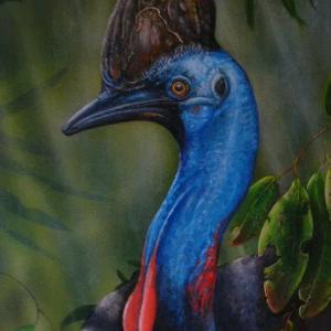 Australian Animals on Canvas